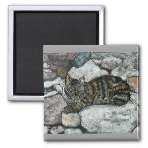 Siesta del gato imán de nevera