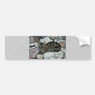 Siesta del gato pegatina para auto