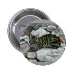 Siesta del gato pins