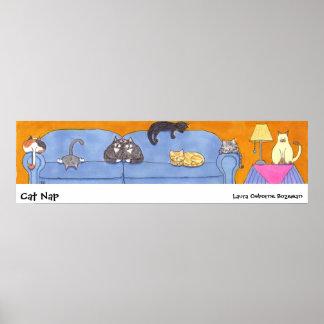 Siesta del gato póster