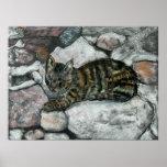 Siesta del gato posters