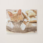 Siesta del gato rompecabeza con fotos