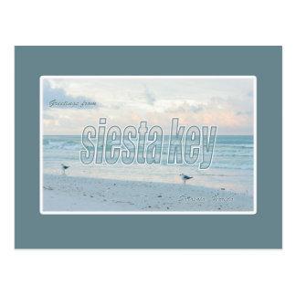 Siesta Key, Florida Postcard