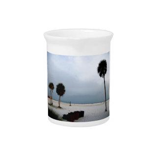 Siesta Keys Beach Palm Trees Pitchers