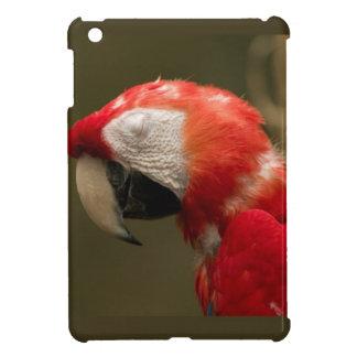 Siesta plumosa iPad mini protector