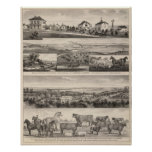 Siete granjas comunes de Springsand Milford, Kansa Póster