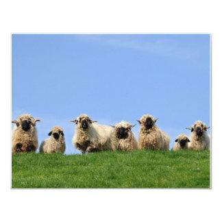 """siete ovejas curiosas del rasta invitación 4.25"""" x 5.5"""""""