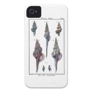 Siete Seashells coloridos iPhone 4 Case-Mate Carcasa