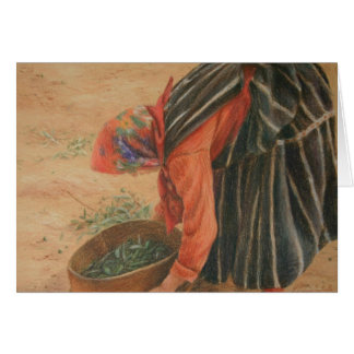 Sifting the Olives Greeting Card