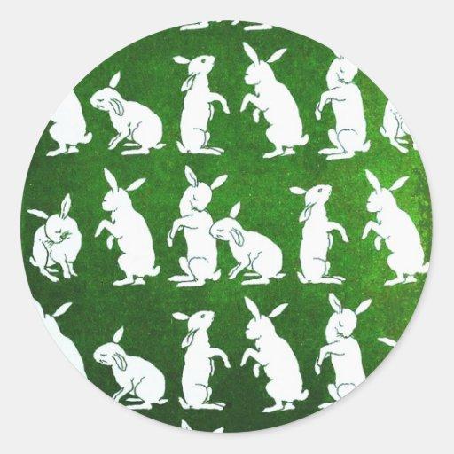 Siga al pegatina blanco del conejo