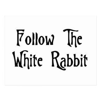 Siga el conejo blanco postales