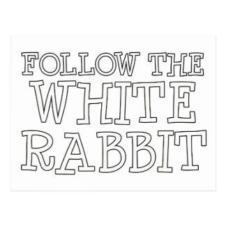 Siga el conejo blanco tarjeta postal
