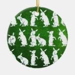 Siga el ornamento blanco del conejo