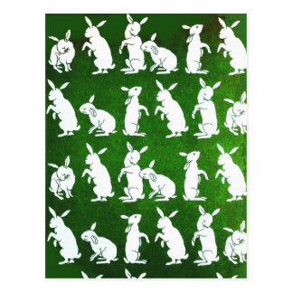 Siga la postal blanca del conejo
