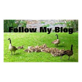 Siga mi tarjeta de visita del blog