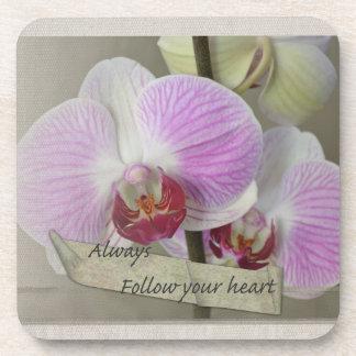 Siga siempre sus orquídeas del corazón posavasos de bebidas
