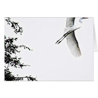 Siga su fotografía de Tao del corazón del zen Felicitación