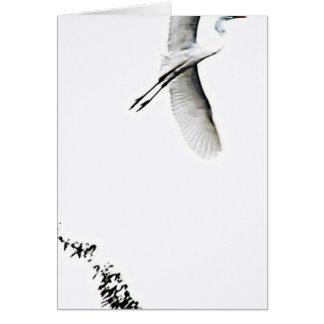 Siga su fotografía de Tao del corazón del zen Felicitaciones