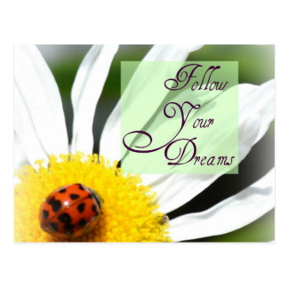 Siga su postal de la mariquita de los sueños