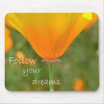 Siga sus sueños alfombrilla de raton
