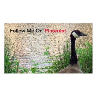Sígame en tarjeta de visita de Pinterest