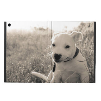 Sight of a puppy dog in summer case for iPad air