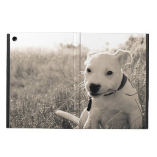 Sight of a puppy dog in summer iPad air case