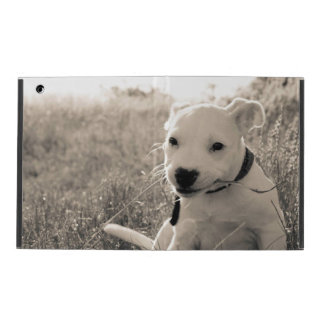 Sight of a puppy dog in summer iPad covers