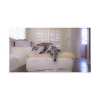 sighthound/whippet/greyhound canvas print
