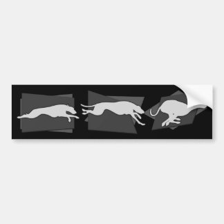 Sighthounds in Motion Bumper Sticker