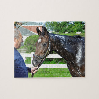 Sightseeing Filly Jigsaw Puzzle
