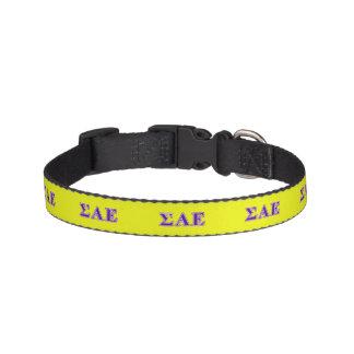 Sigma Alpha Epsilon Purple Letters Pet Collars