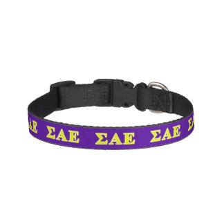 Sigma Alpha Epsilon Yellow Letters Pet Collar