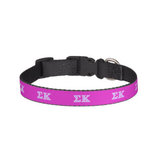 Sigma Kappa Lavender Letters Dog Collars