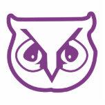 Sigma Pi Owl Color Photo Sculpture