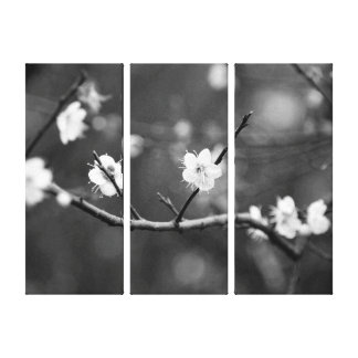 Sign of Spring/Oriental Zen B&W Flora Photography
