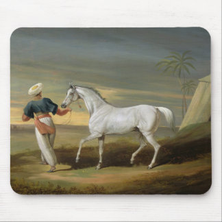 Signal, a grey Arab, with a Groom in the Desert (o Mouse Pad