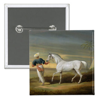 Signal, a grey Arab, with a Groom in the Desert (o Pinback Button