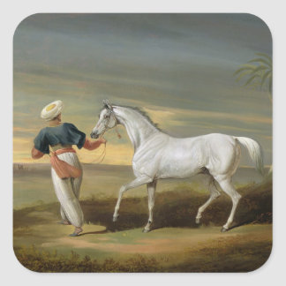 Signal, a grey Arab, with a Groom in the Desert (o Square Sticker