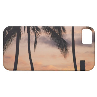 Signal and Palm Tree iPhone SE/5/5s Case
