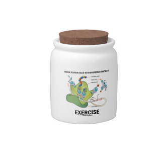 Signal Cells To Start Protein Synthesis Exercise Candy Jars