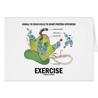 Signal Cells To Start Protein Synthesis Exercise Greeting Card