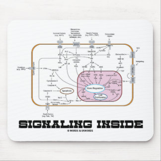 Signaling Inside (Signal Transduction Pathways) Mouse Pad