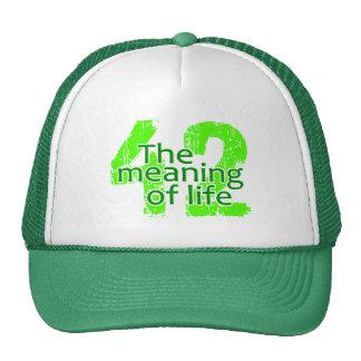 Significado 42 del gorra de la vida