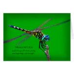 Significado de libélulas tarjetas