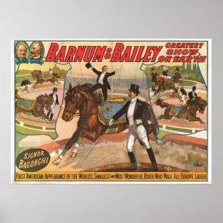Signor Bagonghi Smallest Rider Circus Poster