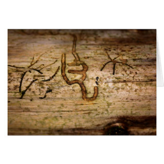 Signs in the Wood - Bark Beetle Traces Card