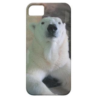 Sika el oso polar funda para iPhone SE/5/5s