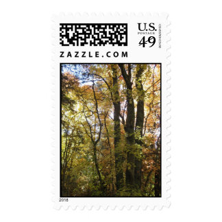 Silence & Sweetness (5) Postage Stamps