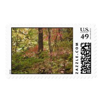 Silence & Sweetness (6) Postage Stamp